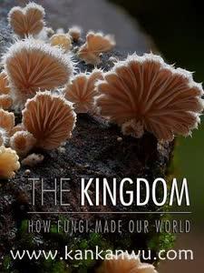 真菌如何造就世界