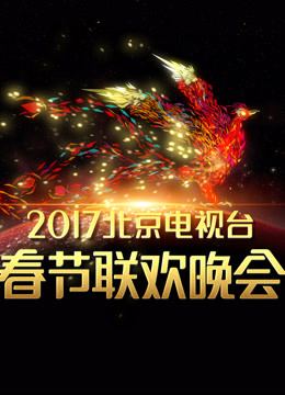 2017北京卫视春晚