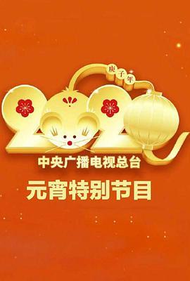 2020年中央广播电视总台元宵节特别节目